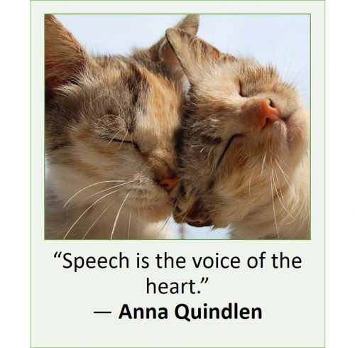Text to speech quote