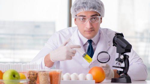 Subject matter expert - roles in elearning development